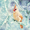 Peaches In The Snow by Amy Tyler