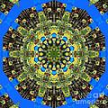 Peacock Feathers Kaleidoscope 9 by Rose Santuci-Sofranko