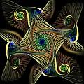 Peacock Gnarl by Amanda Moore