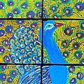 Peacock Ix by Kruti Shah