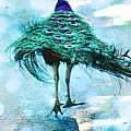 Peacock Walking Away by Diana Haronis