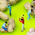Peanut Workers Little People On Food by Paul Ge