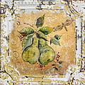 Pears And Dragonfly On Vintage Tin by Jean Plout