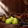Pears At The Old Farm Market by Olivier Le Queinec