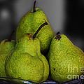 Pears by Ben Yassa