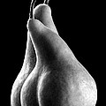 Pears Can Be Sexy Too by Frederic A Reinecke