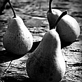 Pears by Clare Bevan