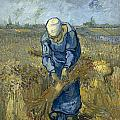 Peasant Woman Binding Sheaves - After Millet by Vincent van Gogh