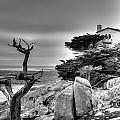 Pebble Beach 2 by Richard J Cassato