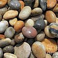 pebble beach Chesil UK  by Julia Gavin
