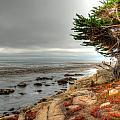Pebble Beach by Richard J Cassato