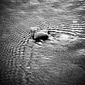 Pebble In The Water Monochrome by Raimond Klavins
