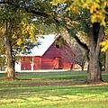 Pecan Orchard Barn by Gordon Elwell