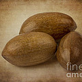 Pecans. by Clare Bambers