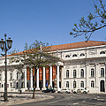 Pedro Iv Square Best Known As Rossio Square by Andre Goncalves