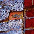 Peek A Boo Brick by Alec Drake