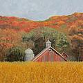 Peekaboo Barn by Sherri Anderson