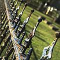 Peeling Graveyard Perspective by Kathy Clark