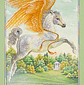 Pegasus by Lynn Bywaters