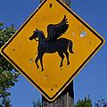 Pegasus Road Sign by Garry Gay