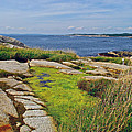 Peggy's Cove From Lighthouse-ns by Ruth Hager