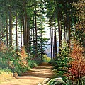 Peisaj by Ioan-aurel Patru