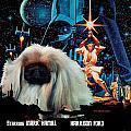 Pekingese Art - Star Wars Movie Poster by Sandra Sij