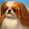 Pekingese by James W Johnson