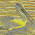 Pelican 1 by Geoff Childs