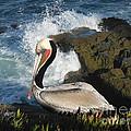 Pelican by April Antonia