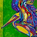 Pelican by Derrick Higgins