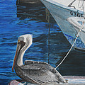 Pelican On A Boat by Ian Donley