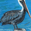 Pelican On Post by Stephen Broussard