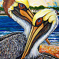 Pelican Pair by Sherry Dole
