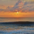 Pelicans At Sunrise 9 10/18 by Mark Lemmon