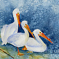 Pelicans At The Weir by Pat Katz