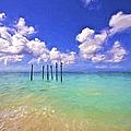 Pelicans Of Aruba by David Letts