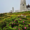 Pemaquid Point by Karol Livote