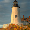 Pemaquid Point Light IIi by Clarence Holmes