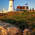 Pemaquid Point Lighthouse by Brian Jannsen