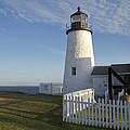 Pemaquid Point Lighthouse by Craig Bohanan