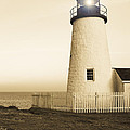 Pemaquid Point Lighthouse by Diane Diederich