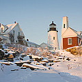 Pemaquid Point Lighthouse Winter In Maine  by Keith Webber Jr