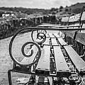 Pembroke Bench  by Mair Hunt