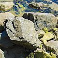 Pembroke Rock by Mair Hunt