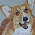 Pembroke Welsh Corgi by Anita Putman