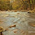 Pemigewasset River Rushing By by Adam Jewell