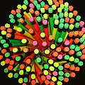 Pencil Blossom by Rick Locke