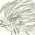 Pencil Drawing Of Hawk Eye by Marissa McAlister