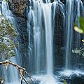 Pencil Pine Falls Cradle Mountain by U Schade